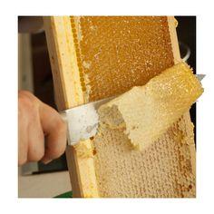 Biene Wabenzieher Zange Bienenstock Imkerei Pinzette Werkzeug Ausrüstung
