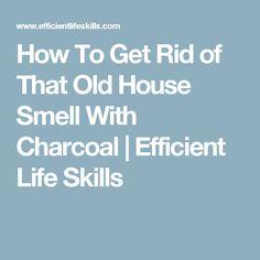 Best Of Basement Smells Like Urine