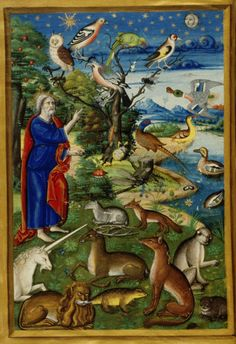 Bodleian, MS Douce 135, f. 017v. Book of Hours, Use of Rome. France, 2nd quarter of the 16th century. God creating