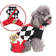 New cheap pet gift uploaded at SketchGrowl: Magician Dog Costume Gifts For Pet Lovers, Pet Gifts, Dog Lovers, Portraits From Photos, Pet Portraits, Cheap Pets, Pet Style, Costume Collection, Dog Costumes