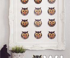 Owl-Specimen-Art-from-kiki-and-company1-e1441466866571 (1)