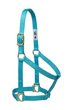 Weaver Leather 35-7405-TU Basic Non-Adjustable Halter, 1-Inch Average Horse, Turquoise Weaver Leather http://www.amazon.com/dp/B00TZVSJX0/ref=cm_sw_r_pi_dp_gEfPwb1WKMM84