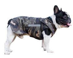 French Bulldog Coat - Winter Dog jacket with underbelly protection - Dog Raincoat - Custom made for your dog Dog Snood, Dog Winter Coat, Basset Hound Dog, Dog Raincoat, Dog Safety, Dog Jacket, Dog Wear, Dog Sweaters, Dog Coats