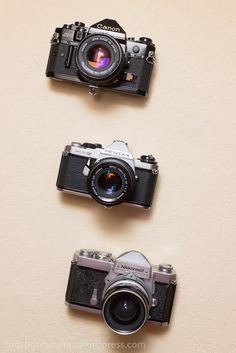 Floating vintage cameras wall display
