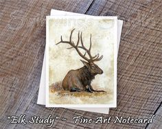 Elk Postcards//Tiny Art Prints 4.25 x 6