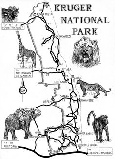 Map of the Ten Best Selfdrive Safaris in Kruger Park South