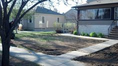 Ugly yard before