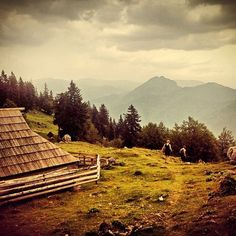 Velika Planina right before the storm.