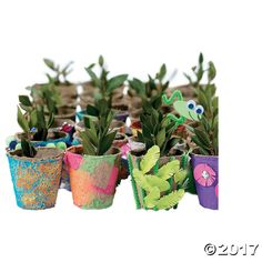Do It Yourself Watch It Grow Seed Pots. Plant flowers or herbs in these pots and watch them grow! Made of biodegradable peat fiber, these miniature pots are ...