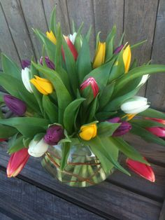 Fun Fact: Tulips are some of the most popular spring flowers of all time