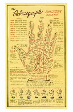 #15- learn to read palms. Don't ask me why, but it seems like a cool thing to know