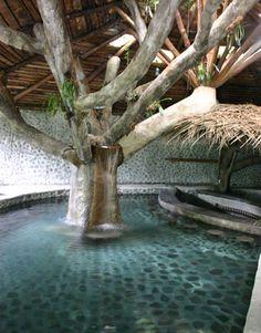 rancho-margot-natural-pool-lg.jpg 360×460 pixels
