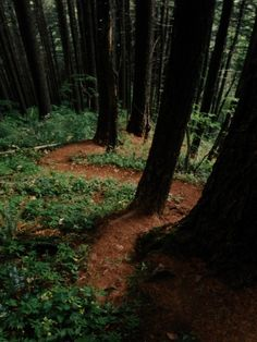 Rock of Ages trail. Columbia River Gorge, Oregon
