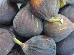 EAT FRESH // CAN // OR DRY SELF FERTILE COMB S//H Black Mission Fig Seeds