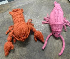 Knitted Lobster & Prawn by Angela Jane of The Needle Works for 'Follow the Herring' exhibition in Berwick upon Tweed