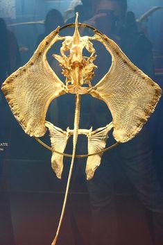Manta ray skeleton | by How I See Life
