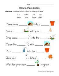 worksheet, growing things worksheet, plant life cycles worksheet ...