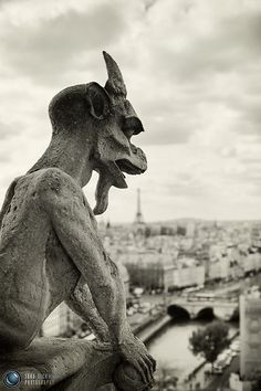 Day 7 - London - Paris, France - Notre Dame  Chimère de Notre Dame follow http://pinterest.com/ahaishopping/