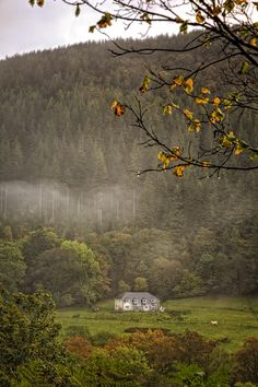 The Place Beyond the Pines - Wales