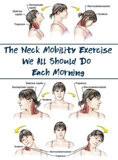 Joint mobility is not the same thing as muscle flexibility. When doing mobility exercises, you generally will not feel much of a stretch, which is fine.