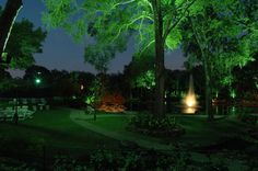 Illuminated the trees to give a dramatic look Dramatic Look, Golf Courses, Trees, Lighting, Projects, Arbor Tree, Log Projects, Light Fixtures, Wood