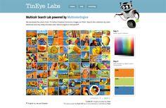 Tin Eye Labs Multicolr Search Lab