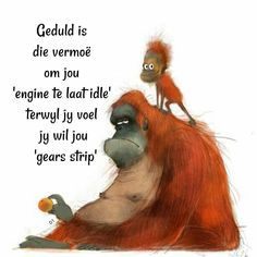 Geduld is die vermoë om jou 'engine te laat idle' terwyl jy voel jy wil jou 'gears strip' Wisdom Quotes, Qoutes, Afrikaanse Quotes, Goeie More, Cute Quotes, Picture Quotes, Thoughts, Humor, Sayings