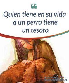 Quien tiene en su vida a un perro tiene un tesoro Quien tiene en su vida a un perro tiene una #fortuna. Es una #afirmación que a muy pocos les sorprenderá, sobre todo a quienes han gozado de su #compañía. #Emociones