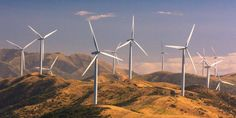 New Zealand Wins Global Praise for 'Historic' Law to Bring Net Carbon Emissions to Zero by 2050 Catania, Renewable Energy, Solar Energy, Blockchain, Country Living Decor, Service Public, Climate Change, Wind Turbine, Australia