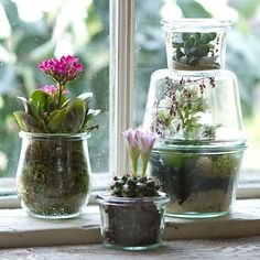 Suspended Weck jars pair with tiny terrarium plants to create an unconventional garden that catches the light in winter windows. Mason Jar Projects, Mason Jar Crafts, Mason Jar Diy, Weck Jars, Canning Jars, Dream Jar, Cactus, Aquaponics Fish, Aquaponics System