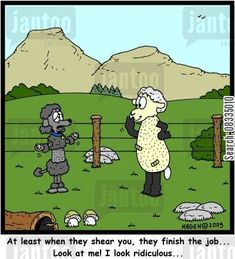 CartoonStock - 'At least when they shear you, they finish the job. Look at me! I look ridiculous. Funny Dog Jokes, Funny Dogs, Funny Animals, Cute Animals, Dog Humor, Hilarious, Poodle Drawing, Smartest Dogs, Poodle Cuts