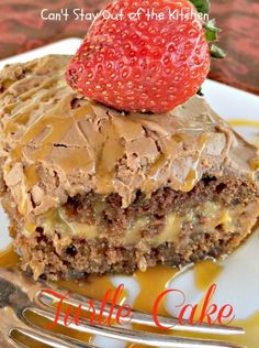 Turtle Cake Recipe ~ Rich, sweet, decadent cake based on Turtle Candies. German chocolate cake is filled with a creamy caramel layer, chocolate chips and pecans, then frosted with a luscious chocolate marshmallow frosting. This is one sensational cake!