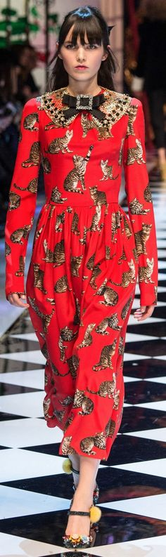 Dolce & Gabbana Fall 2016 Ready-to-Wear