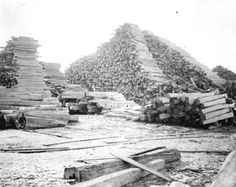 Florida Memory - Stacked cedar posts in lumber yard at E. Faber's Cedar Mill - Cedar Key, Florida 1890s