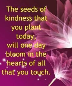 *The seeds of kindness that you plant today, will one day bloom in the hearts of all that you touch...