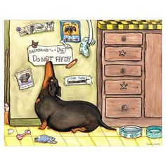 This is my poor Cooper...now on vet diet food, sweet boy.  Weighty Weiner Dog Poster by Terry Pond