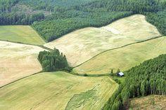 green countryside from air. Photo: Lauri Hämäläinen