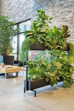 Office Space Design, Office Interior Design, Interior Design Living Room, Interior Garden, Interior Plants, Indoor Planters, Indoor Garden, Pot Jardin, Green Office
