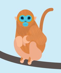 An incredible animal illustration by Alan Dalby. This chap is a Golden Snub-nosed Monkey.