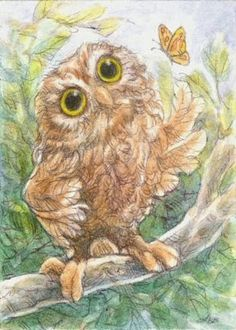 "Art by Lynn Bonnette: ""The Wise Old Owl"""