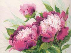 Вышивка крестом. цветы. Розовые пионы.Риолис