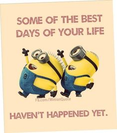 Funny Minion Quote - Funny Minion Meme, funny minion memes, funny minion quotes, Funny Quote, Minion Quote Of The Day - Minion-Quotes.com