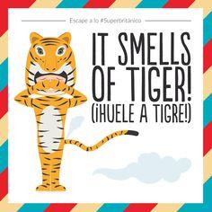 Alguien ha tenido un escape a lo #Superbritánico: It smells of tiger! (¡Huele a tigre!).