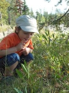 20 tips for enjoying the outdoors with your toddler , very helpful for people with small children who enjoying hiking, backpacking and camping.