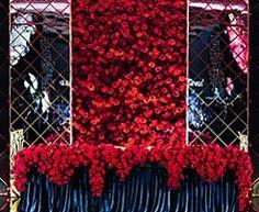 Свадьбы в Москве и за границей - фото, видео