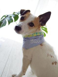 NEW ARRIVAL 【M/XL】 Reversible Bandana Flower desing | KOJIRO