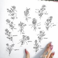As my last flash sheet has been so popular I decided to draw another :) I only h… - tattoo tatuagem Sagittarius Tattoo Designs, Aquarius Tattoo, Horoscope Tattoos, Zodiac Sign Tattoos, Zodiac Signs, Scorpio Zodiac Tattoos, Zodiac Art, Street Tattoo, Tattoo Style