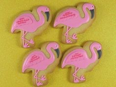 decorating flamingo cookies - Google Search