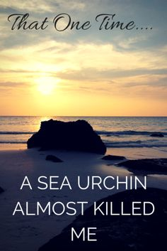 That One Time A Sea Urchin Almost Killed Me in Cambodia - Adventures Around Asia