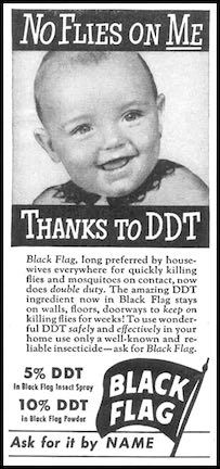 No Flies on Me Thanks to DDT – ad for Black Flag Spray